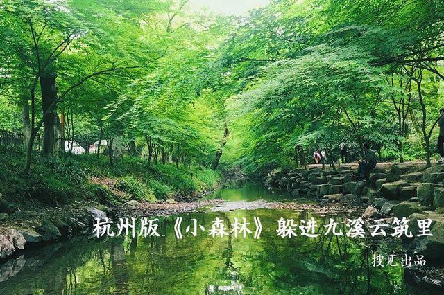 《搜见》192期:藏在九溪的杭州版小森林