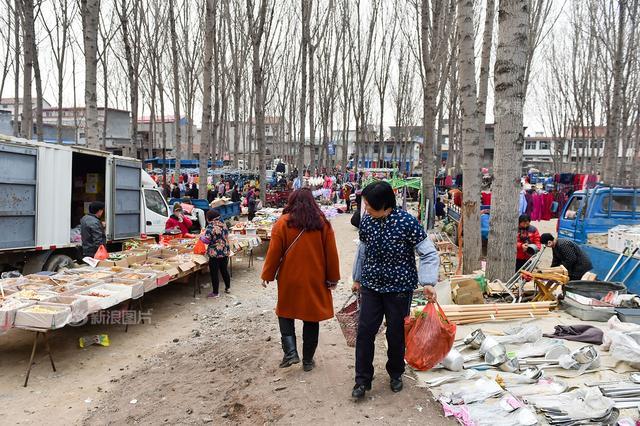 杭州一路口扔满垃圾 靠外卖盒上订单偷倒人被找到