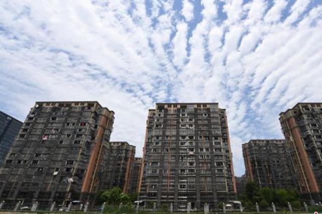 杭州1小区防盗窗安装密集 铁网包围楼体吓坏密恐者