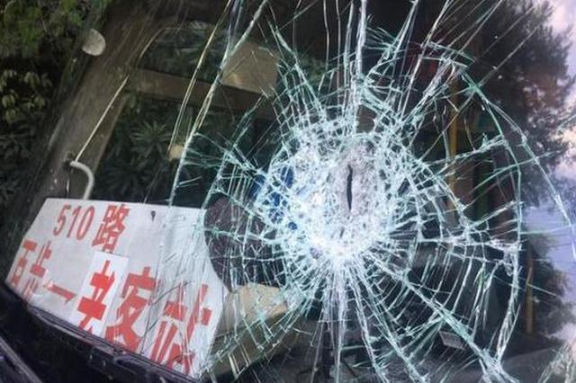 台州1公交车在国道上突遭横祸 挡风玻璃被砸出大窟窿