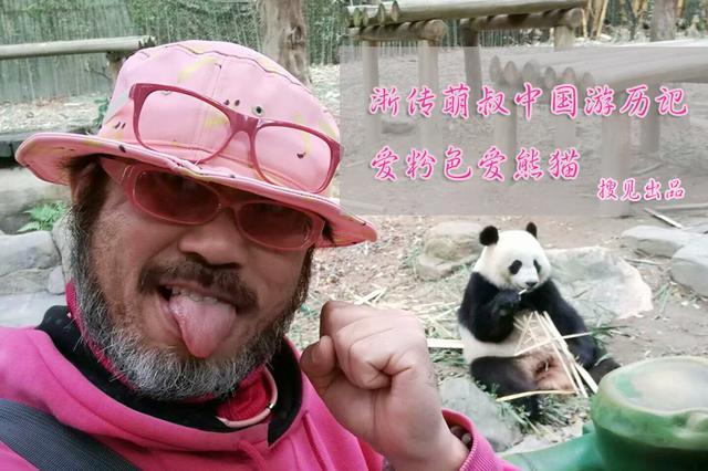 《搜见》第194期:浙传萌叔中国游历记 爱粉色爱熊猫