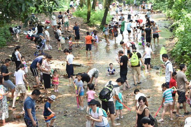 杭州九溪十八涧游人如织 游客带孩子寻觅清凉