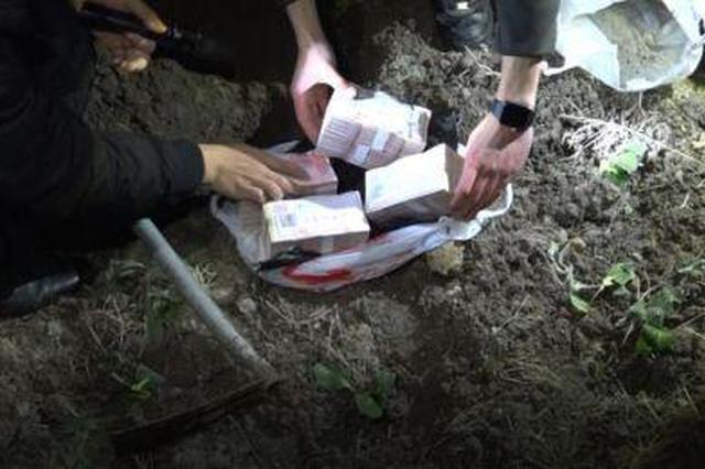 浙江1黑彩团伙嫌犯被批捕 巨额现金藏在洗衣机菜地里
