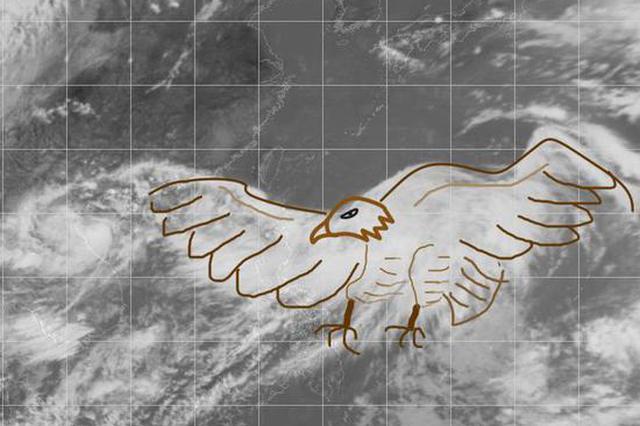台风安比强度逐渐加强 22日白天或登陆浙江沿海