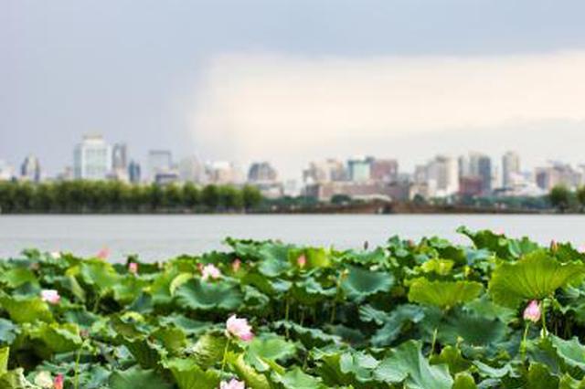 告別纏綿秋雨 杭城接下來的天氣不熱不冷堪稱完美