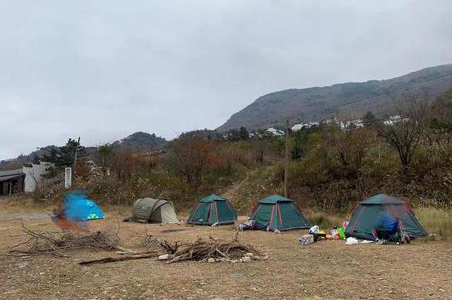 谁在惊扰野生梅花鹿 杭州自然保护核心区沦为旅游区
