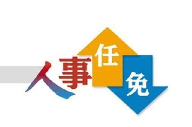 浙江任免徐纪平、姚战、金建培、俞晓丹职务