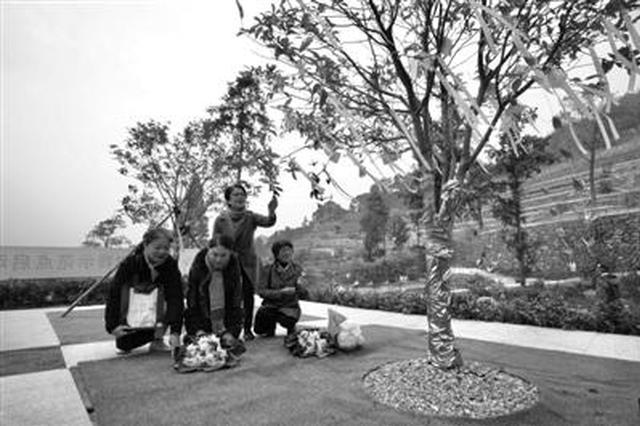 宁波进行首批集体生态树葬 4位逝者长眠桂花树下