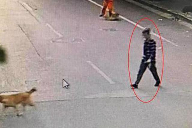 杭州男子牵狗出门遛弯 发现一辆未锁自行车就捡回家