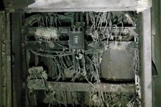 宁波一店铺浓烟滚滚 7名外卖小哥冲进去将火扑灭