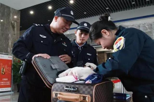 台州女子行李箱放53公分砍刀 行拘10日