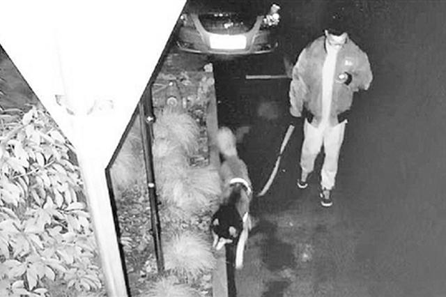 杭1姑娘酒后逗狗被咬伤鼻子 接警警方:狗主人已找到