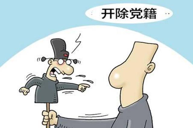 舟山市原副市长傅良国受到开除党籍、政务撤职处分