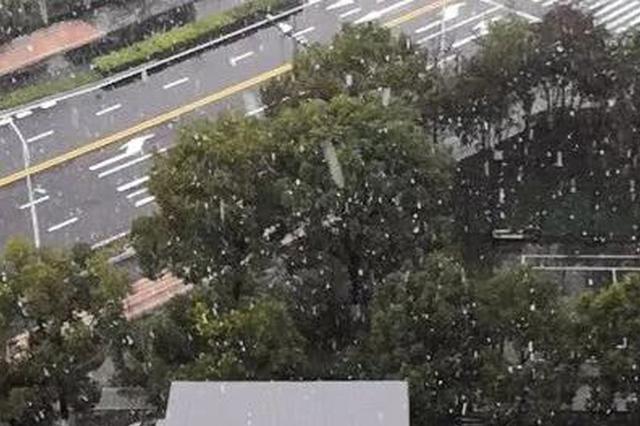 杭州今日下大雪 雪后放晴或将再等一个月(图)