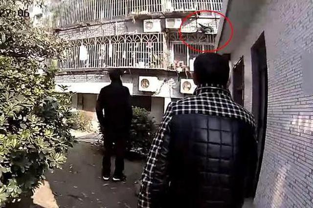 嘉兴1老人阳台晒衣不慎跌落 被困次层防盗窗上下两难