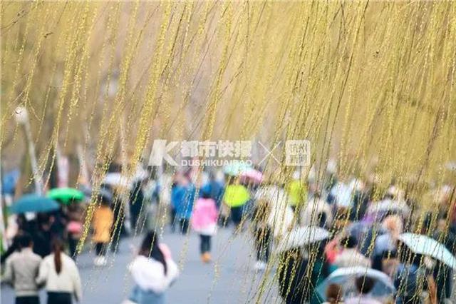 前?#25945;?#27809;下的雨要补回来 杭州新一轮雨水已经就位
