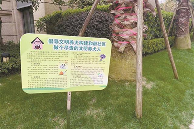 杭州江干区试点文明遛犬区 每天十个人轮流执勤