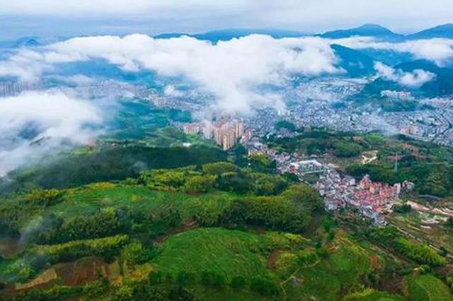 浙江首批清新空气示范区公布 16个县级城市符合标准