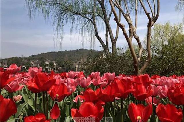 一个星期过完春夏秋冬四个季节 下周杭州天气又逆天