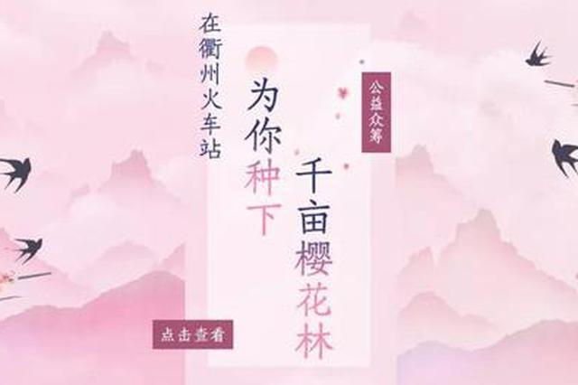 浙江衢州众筹百亩樱花林 2小时350棵樱花认购一空