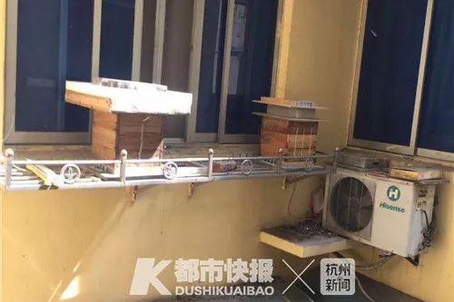 杭州一老小区窗台上5箱蜜蜂 邻居吓得不敢开窗(图)