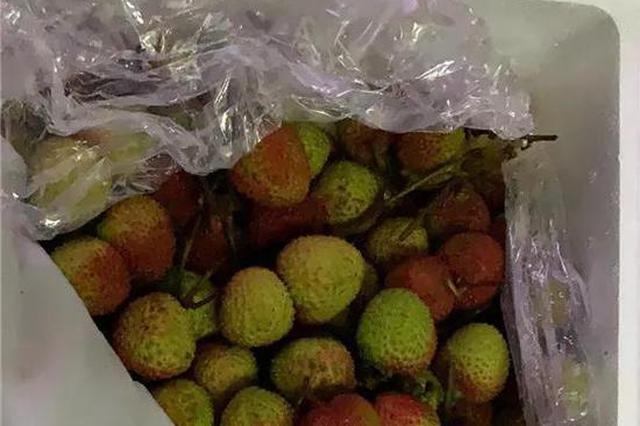 荔枝自由上热搜 杭州近期的荔枝价格一直在跌(图)