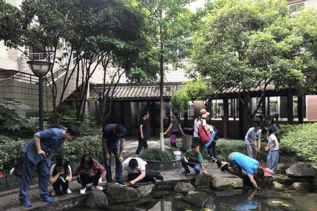 杭1中学钓小龙虾比赛 参赛者从幼儿园到初三学生都有