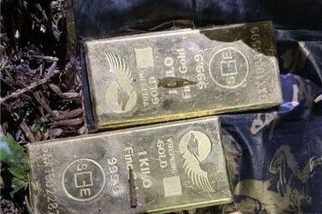 杭州1小偷盗200万现金50斤 嫌太重换成黄金埋进公墓