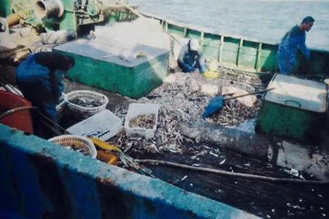 台州开出首例非法捕捞从业禁制令 并对捕捞者判刑