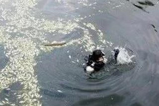 杭州女子骑电瓶车冲入河中 路过辅警救人:我不去谁去