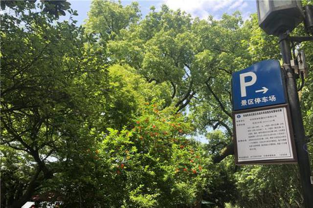 6月1日起西湖景区停车变优惠 周末白天停车10元/小时