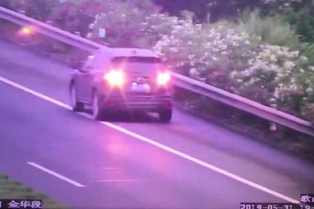 浙男子将高速路当成练习场 反复前行倒车险象环生