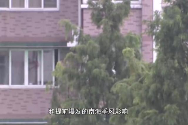 浙江省入梅了 接下来有几轮强降雨要注意