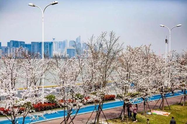 杭州网红大道推荐 每一处都非常适合打卡拍照(图)