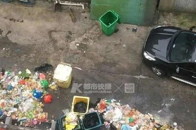 杭州一条美食街竟成了垃圾街 现场触目惊心