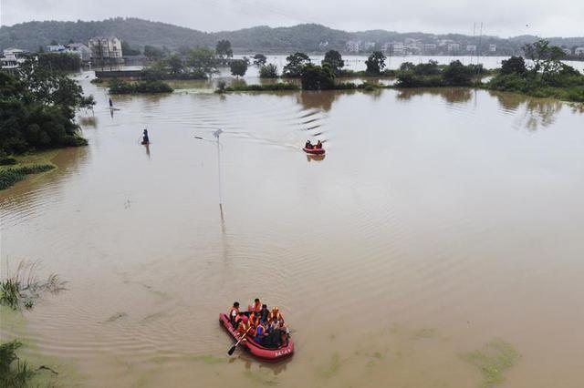 皮划艇冠军参与浙江台风救援 建议自救技能要从小学