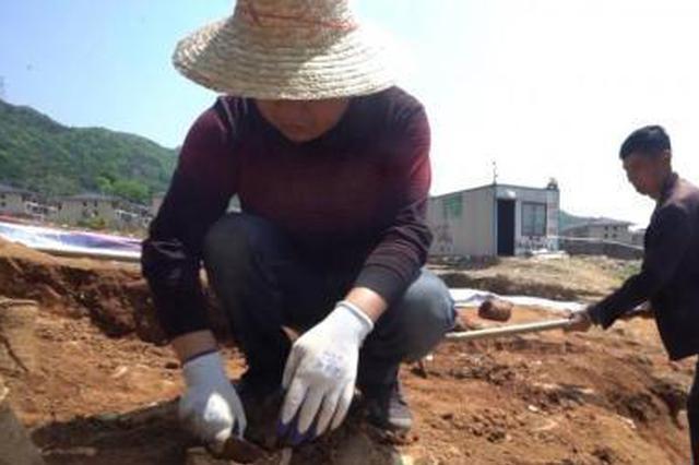 浙江台州路桥考古发现9处东晋时期窑址(图)