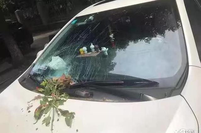 又一辆车被天降花盆砸了 杭州这个小区住户很糟心