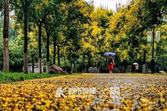 杭州观月的最佳时间是23时41分 看皎皎白月光要熬夜了