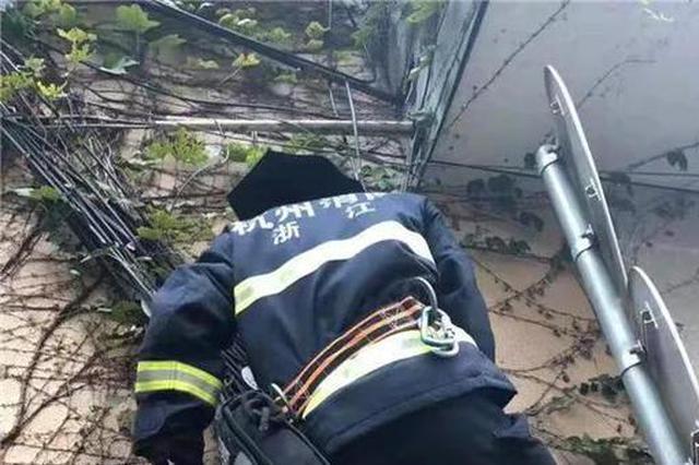 杭州一小区电线起火 边上有条断成两截的蛇(图)