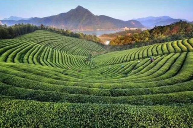 莫干山北麓,华东首个以运动探险为主题4A景区等你来