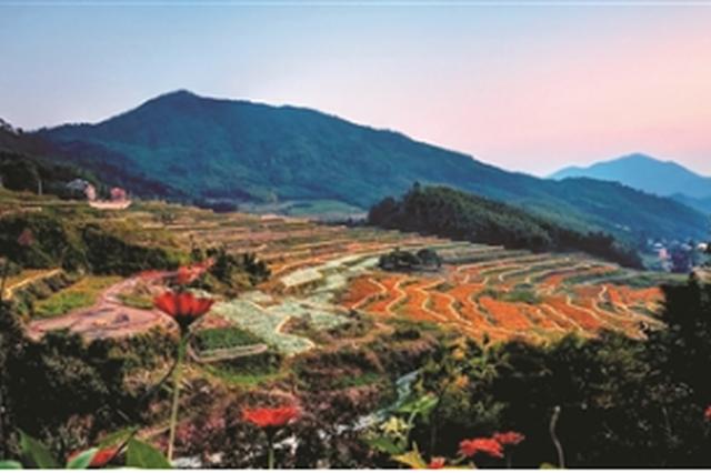 临安村落景区网红景点共同发力 接待游客超110万人次