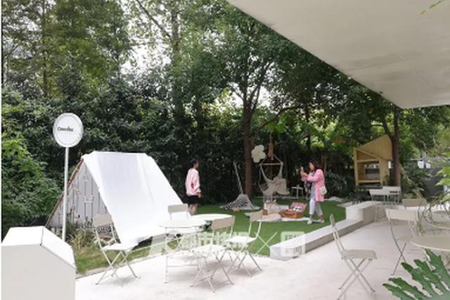姑娘吐槽杭州网红咖啡店 拍几张照要收500元/小时