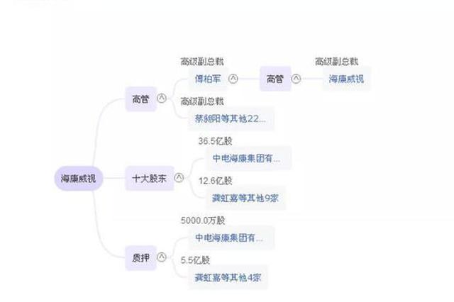 杭州海康威视副董事长和总经理被证监会立案调查