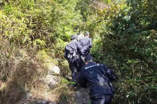 台州六旬老人迷失山林 喝山泉水吃野果挺过六天五夜