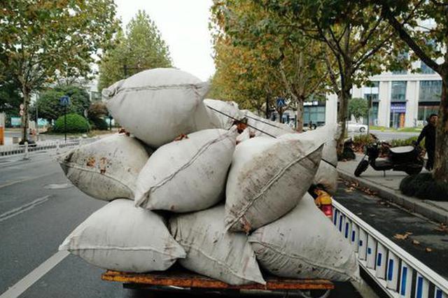 昨日杭城环卫工人扫了4个小时 扫了10.5吨落叶