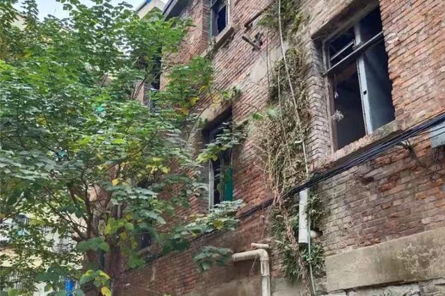 杭州市中心有幢房子空置了五六年 如今已成露天厕所