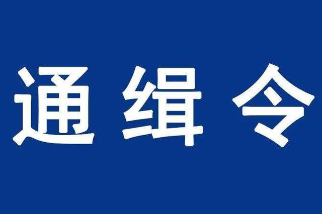 公安部发出A级通缉令 4名浙江人在列(图)
