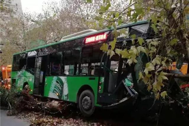杭州1辆公交车撞上绿化带车头面目全非 梧桐树被撞倒