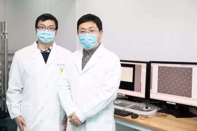 西湖大学解析出了新冠病毒侵入人体的ACE2全长结构
